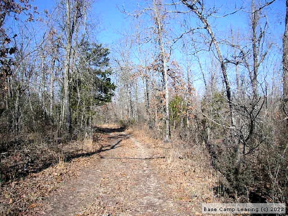 Fulton county Arkansas hunting lease